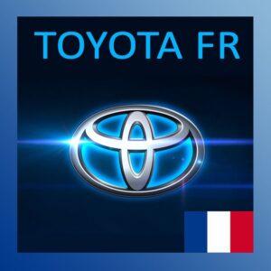 Toyota z Francji sprawdzenie Vin przebiegu historii